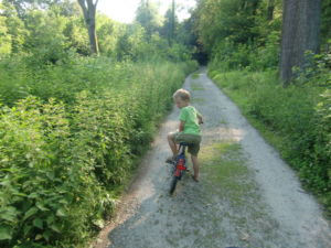 kostelose ausflüge mit Kindern - Wilkräuter